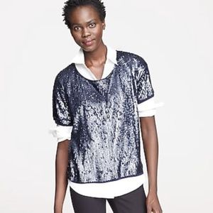 J Crew Collection Slouchy Sequin Blue Shirt Blouse